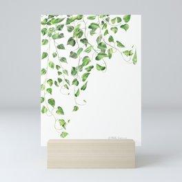 Golden Pothos - Ivy Mini Art Print