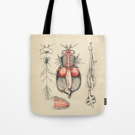 Cabinet of Curiosities No.1 Tote Bag