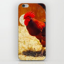Rooster at Preetirang Sanctuary iPhone Skin