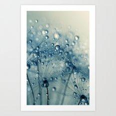Dandy Blue Shower Art Print