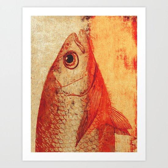 Piscibus 11 Art Print