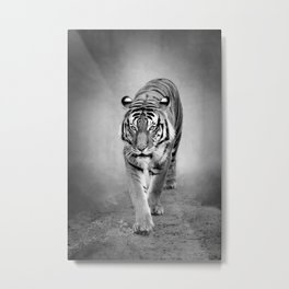 Tiger in Black and White Metal Print
