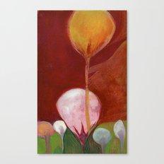 Gotu Kola Canvas Print