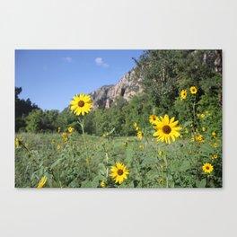 Sedona Sunflowers Canvas Print