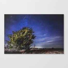 Geminid Meteor Shower 2012 Canvas Print