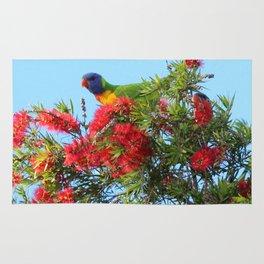 Rainbows and Brushes - Australian Lorikeet Rug