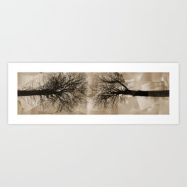Two Trees Art Print