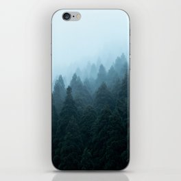 Japanese Forest iPhone Skin