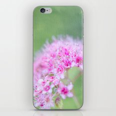 Spirea iPhone & iPod Skin
