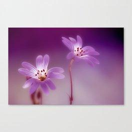 Purple Stitches Canvas Print
