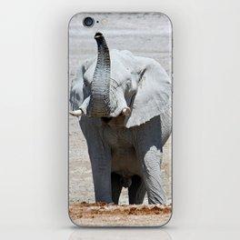 NAMIBIA ... Elephant fun III iPhone Skin