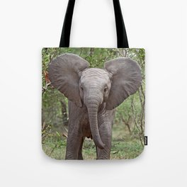 Small Elephant - Africa wildlife Tote Bag