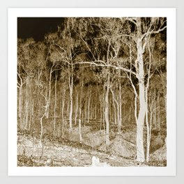 Forest trees at night Art Print