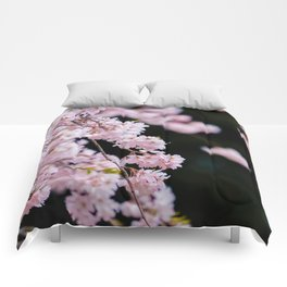 Japanese Cherry Blossoms Comforters
