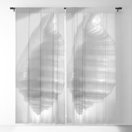 White Seashell on White by Murray Bolesta. Heavenly! Blackout Curtain