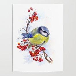 Watercolor Titmouse Great tit winter bird Poster