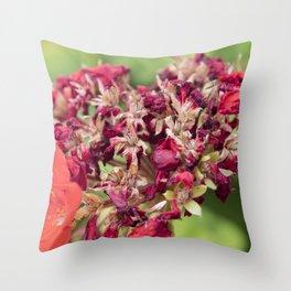 geranium in the garden Throw Pillow