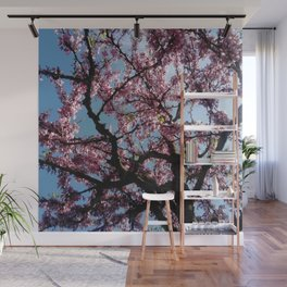 flower and light  - Cherry tree 4 Wall Mural