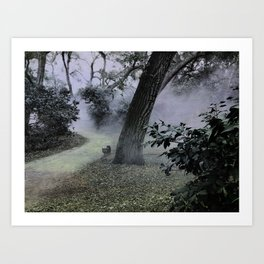 cat in the forest mist Art Print