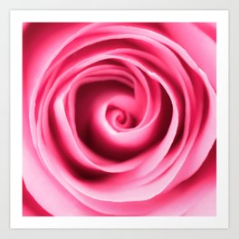 Pink rose petals swirls Art Print
