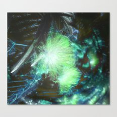 Starshiver Canvas Print
