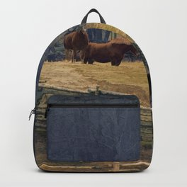 Wilderness Horse Ranch Backpack