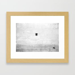 Bottle Wall with Pigeon (Paris, France)  Framed Art Print