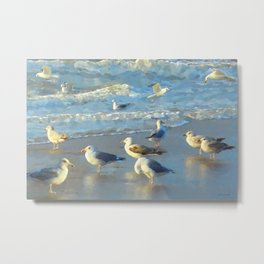 Seascape with gulls Metal Print