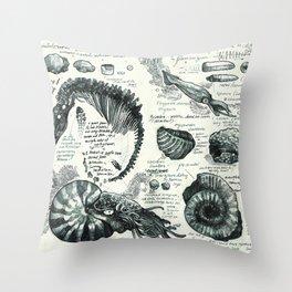 Sketchbook - Fossils Throw Pillow