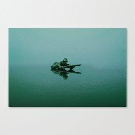 Mirror of Confusion Canvas Print