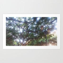 Le Réverbère d'Annaba (Streetlights in Annaba) Art Print