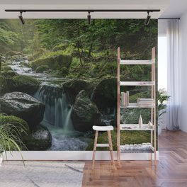 Flowing Creek, Green Mossy Rocks, Forest Nature Photography Wall Mural