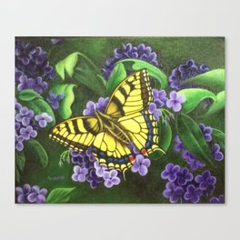 TigerEye Swallowtail Butterfly on Purple Flowers Canvas Print
