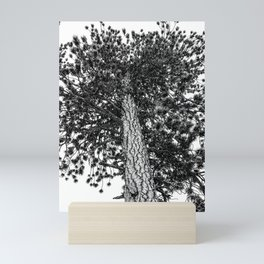 Tree Top // Snowy Winter Alpine Branches Trunk Nature Landscape Photography Black and White Decor Mini Art Print