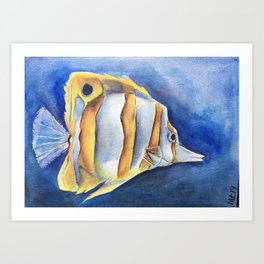 Copper-Banded Butterfly Fish Art Print