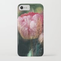tulip iPhone & iPod Cases featuring Tulip by Maria Heyens