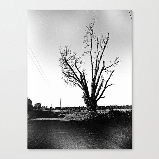 not a pretty tree Canvas Print