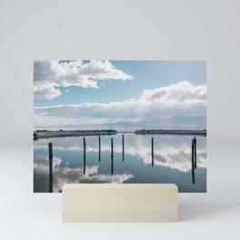 Salton Sea Reflections Mini Art Print