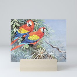 Scarlet macaws  Mini Art Print