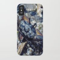 crab iPhone & iPod Cases featuring Crab by Louis Bullock