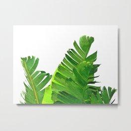 Palm banana leaves tropical watercolor illustration Metal Print