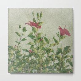 Botanical Vintage Style Motif Artwork Metal Print