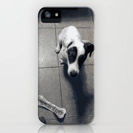 My dog Marley! iPhone Case