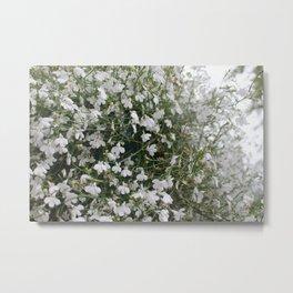 Tangles of Whites Metal Print
