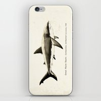 biology iPhone & iPod Skins featuring Carcharodon carcharias II ~ Great White Shark by Amber Marine
