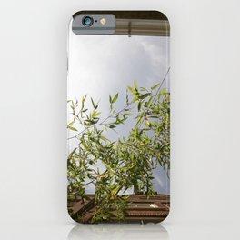 #ams iPhone Case