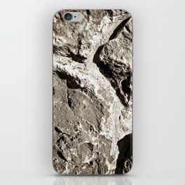 Which Way Through The Canyon iPhone Skin
