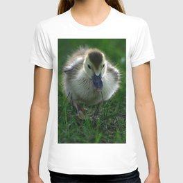 Cute Duckling Walking on a Lawn T-shirt