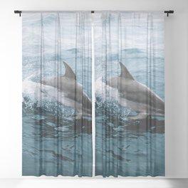 Dolphin in the Atlantic Ocean - Wildlife Photography Sheer Curtain