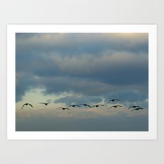Flying Silhouettes Art Print